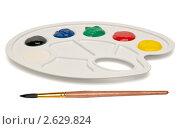 Купить «Пластиковая палитра с кистью и красками изолированная на белом фоне», фото № 2629824, снято 28 июня 2011 г. (c) Link Art / Фотобанк Лори