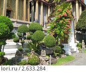 Сад королевского дворца Бангкока (2009 год). Редакционное фото, фотограф Александр Верховцев / Фотобанк Лори