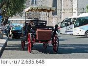Португалия. Прогулка на лошади по городу (2011 год). Редакционное фото, фотограф Vasilii Olii / Фотобанк Лори