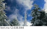 Купить «Вышка сотовой связи в зимнем лесу», видеоролик № 2638844, снято 16 февраля 2011 г. (c) Андрей Прохоров / Фотобанк Лори