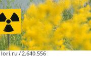 Купить «Знак радиационной опасности в траве», видеоролик № 2640556, снято 6 июля 2011 г. (c) Юрий Пономарёв / Фотобанк Лори