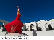 Купить «Танцовщица фламенко», фото № 2642468, снято 18 февраля 2019 г. (c) Никита Буйда / Фотобанк Лори