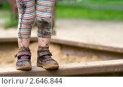 Купить «Хорошо погуляла!», фото № 2646844, снято 14 июня 2010 г. (c) Юлия Шилова / Фотобанк Лори