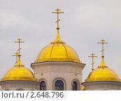 Купить «Купола Вознесенской Церкви в Звенигороде», фото № 2648796, снято 18 июня 2011 г. (c) Михаил Феоктистов / Фотобанк Лори