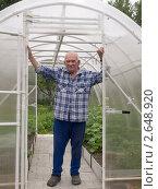 Купить «Садовод в теплице», фото № 2648920, снято 25 июня 2011 г. (c) Андрей Голубев / Фотобанк Лори