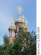 Купола Рождественской церкви в Нижнем Новгороде. Стоковое фото, фотограф Александра Шкиндерова / Фотобанк Лори