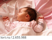 Купить «Новорождённый младенец спит», эксклюзивное фото № 2655988, снято 5 июня 2011 г. (c) Дмитрий Неумоин / Фотобанк Лори