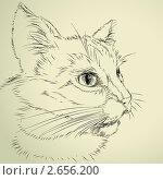 Купить «Рисунок кота», иллюстрация № 2656200 (c) Aqua / Фотобанк Лори