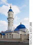 Купить «Татарская Белая мечеть в Астрахани», фото № 2657388, снято 5 марта 2011 г. (c) Анастасия Богатова / Фотобанк Лори