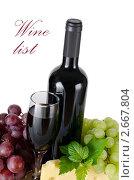 Купить «Вино и виноград», фото № 2667804, снято 26 июня 2011 г. (c) Воронин Владимир Сергеевич / Фотобанк Лори