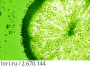 Купить «Лайм в воде», фото № 2670144, снято 18 июня 2011 г. (c) Иван Михайлов / Фотобанк Лори
