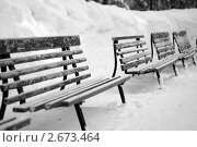 Скамейки. Стоковое фото, фотограф Марина / Фотобанк Лори