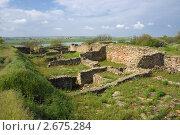Купить «Руины Танаиса на фоне донской дельты», фото № 2675284, снято 14 мая 2011 г. (c) Борис Панасюк / Фотобанк Лори