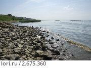 Купить «Каменистый пляж на берегу Азовского моря», фото № 2675360, снято 1 июля 2011 г. (c) Борис Панасюк / Фотобанк Лори