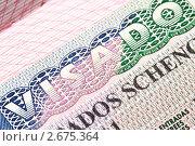 Купить «Фрагмент шенгенской визы», фото № 2675364, снято 6 июля 2011 г. (c) Роман Сигаев / Фотобанк Лори