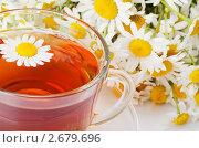 Купить «Чай с ромашкой», фото № 2679696, снято 4 июля 2011 г. (c) Воронин Владимир Сергеевич / Фотобанк Лори