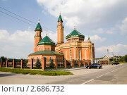 Мечеть (2011 год). Стоковое фото, фотограф Дудакова / Фотобанк Лори