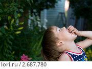 Мальчик на даче ест укроп. Стоковое фото, фотограф Ольга Шабалкина / Фотобанк Лори