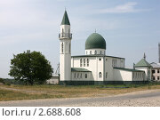 Купить «Мечеть у дороги», фото № 2688608, снято 19 июля 2011 г. (c) Игорь Веснинов / Фотобанк Лори