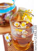Купить «Ромашковый чай», фото № 2692320, снято 22 июля 2011 г. (c) Ольга Красавина / Фотобанк Лори