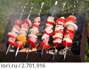 Купить «Готовящийся шашлык», фото № 2701916, снято 30 июля 2011 г. (c) Анастасия Мелешкина / Фотобанк Лори