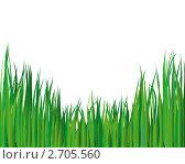 Купить «Зеленая трава», иллюстрация № 2705560 (c) Павел Коновалов / Фотобанк Лори