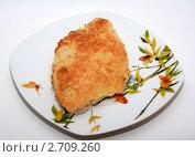 Куриная отбивная в сыре. Стоковое фото, фотограф Марина / Фотобанк Лори