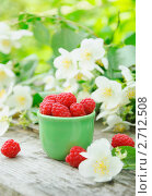 Купить «Свежая малина и жасмин в саду», фото № 2712508, снято 8 июля 2011 г. (c) Светлана Зарецкая / Фотобанк Лори