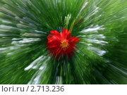 Купить «Красный футуристический цветок зеленом фоне», фото № 2713236, снято 9 августа 2011 г. (c) Aleksander Kaasik / Фотобанк Лори