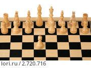 Купить «Белые начинают», фото № 2720716, снято 15 августа 2011 г. (c) Игорь Веснинов / Фотобанк Лори