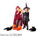 Купить «Девочки в костюмах ведьм», фото № 2720804, снято 31 октября 2010 г. (c) Майя Крученкова / Фотобанк Лори