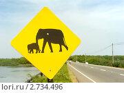 Купить «Дорожный знак на дороге в Шри Ланке», фото № 2734496, снято 13 февраля 2011 г. (c) Иван Нестеров / Фотобанк Лори