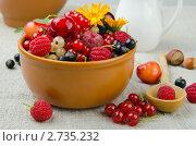 Купить «Летние ягоды», фото № 2735232, снято 12 июля 2011 г. (c) Антон Стариков / Фотобанк Лори