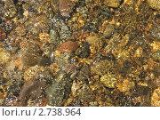 Текущая вода. Стоковое фото, фотограф Медведев Михаил / Фотобанк Лори