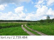 Купить «Проселочная грунтовая дорога летом», эксклюзивное фото № 2739484, снято 10 июля 2011 г. (c) Дмитрий Абушкин / Фотобанк Лори