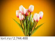 Купить «Букет искусственных тюльпанов на оранжевом фоне», фото № 2744488, снято 10 июля 2010 г. (c) Elnur / Фотобанк Лори