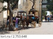 Мальта. Валлетта. Прогулочные кареты (2011 год). Редакционное фото, фотограф Александр Карябин / Фотобанк Лори
