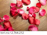 Купить «Лепестки розы на столе», фото № 2764212, снято 3 сентября 2010 г. (c) Dzianis Miraniuk / Фотобанк Лори