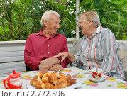 Купить «Счастливые пенсионеры на даче едят пирожки», эксклюзивное фото № 2772596, снято 1 сентября 2011 г. (c) Анна Мартынова / Фотобанк Лори