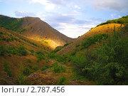Купить «Крым. Зеленогорье», фото № 2787456, снято 3 августа 2011 г. (c) Михаил Фёдоров / Фотобанк Лори
