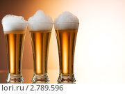 Купить «Пиво», фото № 2789596, снято 11 июля 2010 г. (c) Elnur / Фотобанк Лори