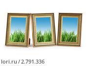 Купить «Рамки для фото с изображением зеленой травы на фоне неба», фото № 2791336, снято 24 декабря 2010 г. (c) Elnur / Фотобанк Лори