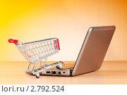 Купить «Концепция интернет покупок», фото № 2792524, снято 25 мая 2011 г. (c) Elnur / Фотобанк Лори