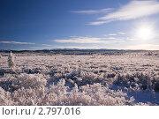 Купить «Зимний морозный день», фото № 2797016, снято 19 ноября 2010 г. (c) Виталий Романович / Фотобанк Лори