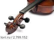 Купить «Скрипка», фото № 2799152, снято 27 февраля 2011 г. (c) Максим Лоскутников / Фотобанк Лори