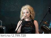 Лариса Долина, певица, народная артистка России (2011 год). Редакционное фото, фотограф Михаил Ворожцов / Фотобанк Лори
