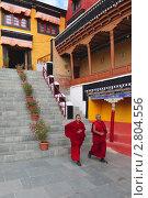 Купить «Монахи во дворе буддийского храма», эксклюзивное фото № 2804556, снято 27 июня 2019 г. (c) Татьяна Белова / Фотобанк Лори