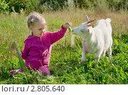 Купить «Ребенок кормит козу», фото № 2805640, снято 6 декабря 2019 г. (c) Икан Леонид / Фотобанк Лори