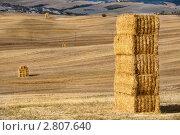Традиционный осенний тосканский пейзаж в Долине Валь д'Орчиа, провинция Тоскана, Италия. Стоковое фото, фотограф Николай Винокуров / Фотобанк Лори