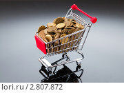 Купить «Медные монеты в продуктовой тележке», фото № 2807872, снято 14 мая 2011 г. (c) Elnur / Фотобанк Лори